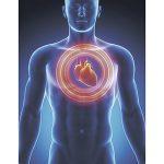2017-03-09 醫 For Elderly 長者心臟衰竭上升 體重急劇暴漲要注意