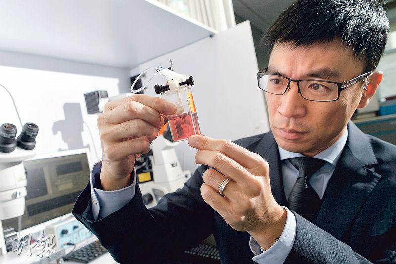 在港土生土長的李登偉6年前從美國回流香港,他憶述當年因為兒子先天器官移位而夭折,毅然決定與太大回港推廣幹細胞研究,亦令他視自己為幹細胞研究的捍衛者。(蘇智鑫攝)