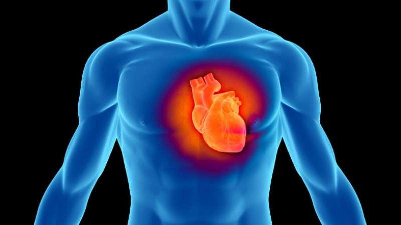 ▲以往的研究主要集中在飲酒與心血管病的長遠關係,今次研究則集中在短期反應。