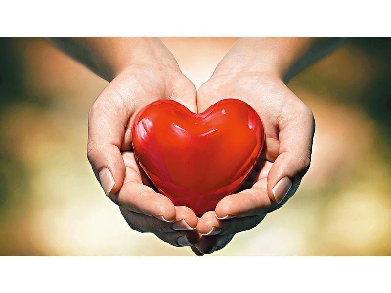 通波仔專治心肌梗塞、心臟病、冠心病。