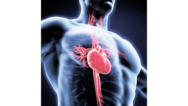 很多心房顫動個案病徵不明顯,患者不易察覺。(網上圖片)