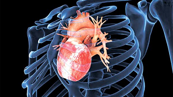 糖尿病是心臟病的第二大高危因素(網上圖片)