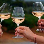 2018-08-24 少量飲酒仍有害健康 研究:喝多少都增加風險