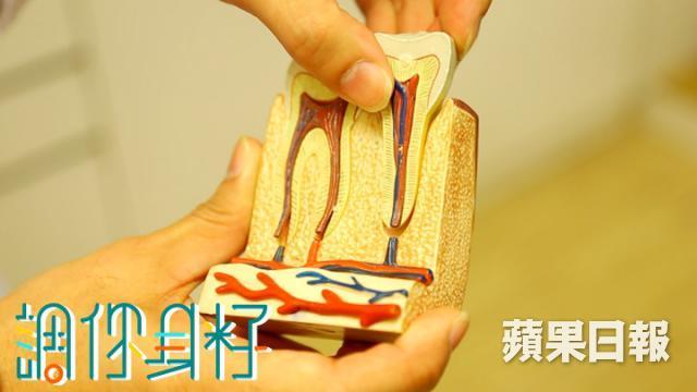 原來牙菌與毒素,會進入心血管道,增加脂肪沉積物而影響心臟。