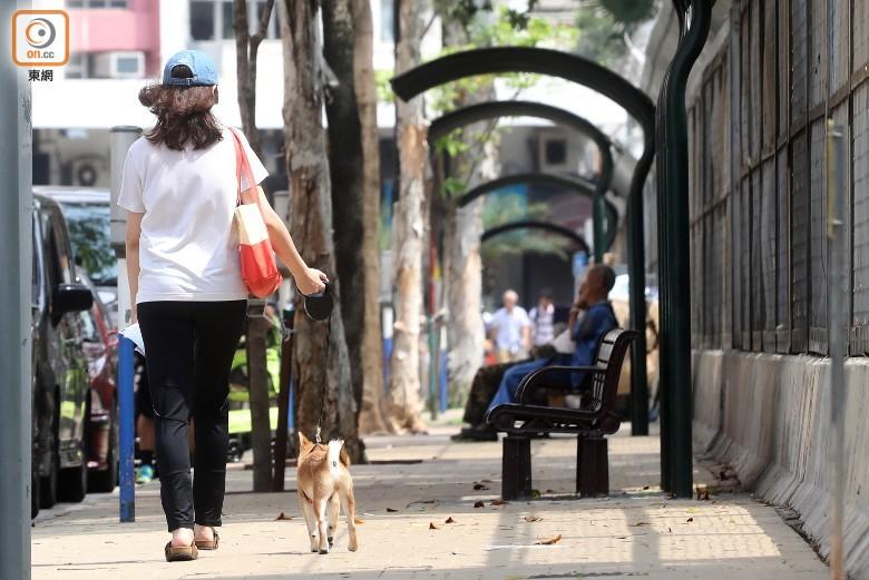 研究發現,飼養寵物特別是養狗的人士,出現心臟健康問題的機會較低。