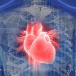 動脈沒阻塞也可能心肌梗塞!醫師提醒大喜、大悲、大怒後 8 小時要注意心臟狀況