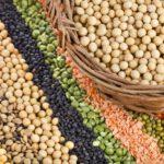 研究:多吃植物性蛋白質助降死亡風險