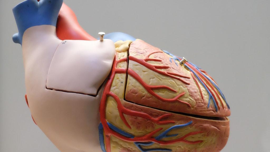 內地官方購百萬心臟支架推低價格 病人組織:本港若做屬病人福音